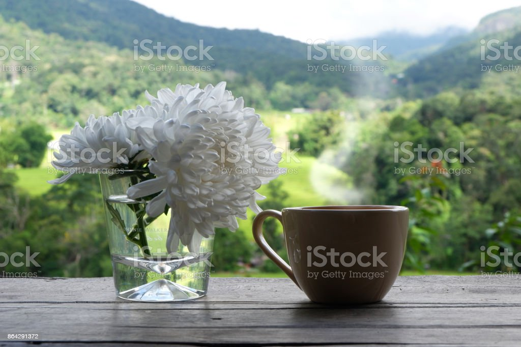 Hot coffee in green nature background. royalty-free stock photo