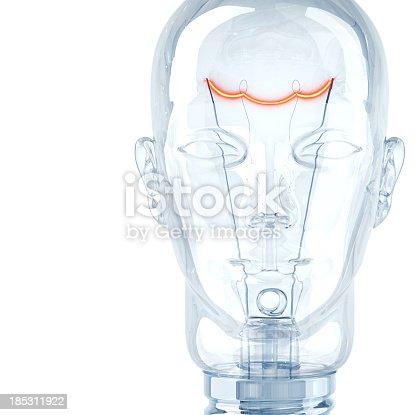 istock Hot Intelligence 185311922