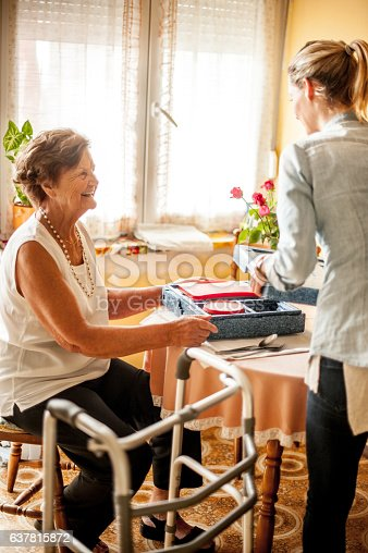 Hot Meal Delivery To An Elderly Woman At Home Stock Photo ...