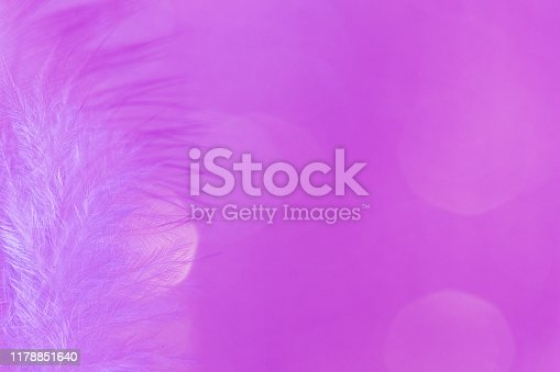 istock Hot pink feathers soft focus with bokeh, feminine background backdrop macrophotography, extreme close up 1178851640