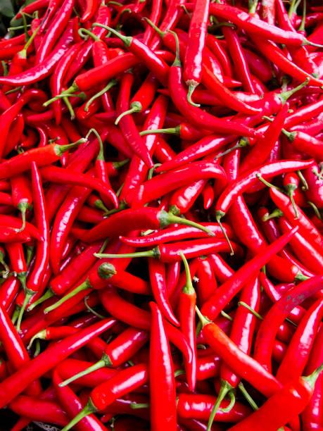 Heiße rote Paprika – Foto