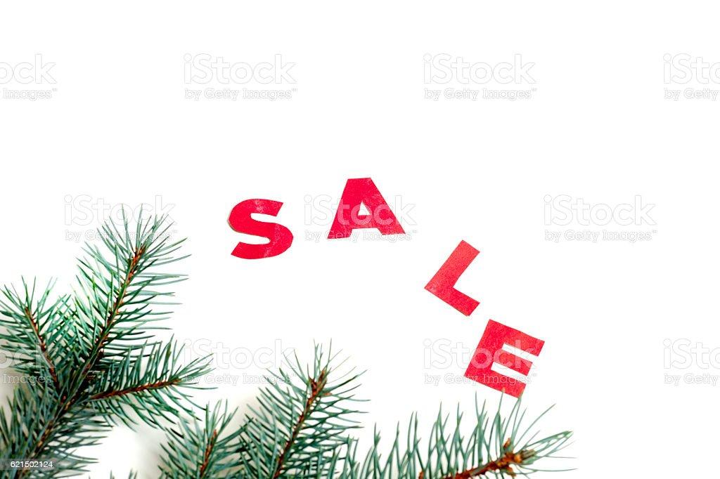 hot Sale and pine branches photo libre de droits