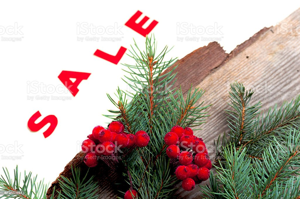 hot Sale and pine branches Lizenzfreies stock-foto
