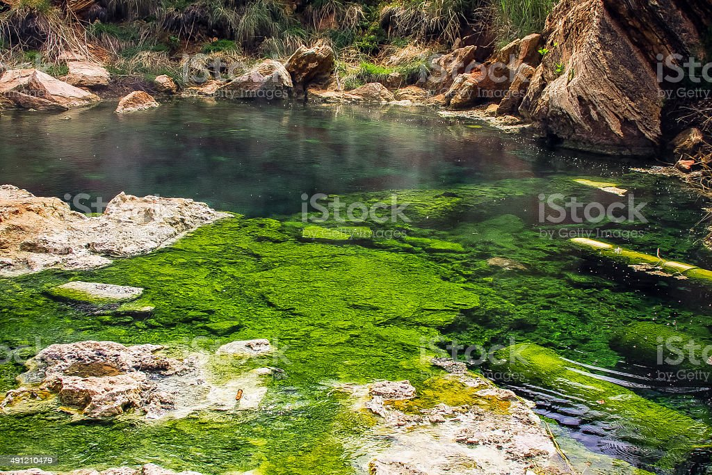 Hot spring geyser mineral formations with algae stock photo