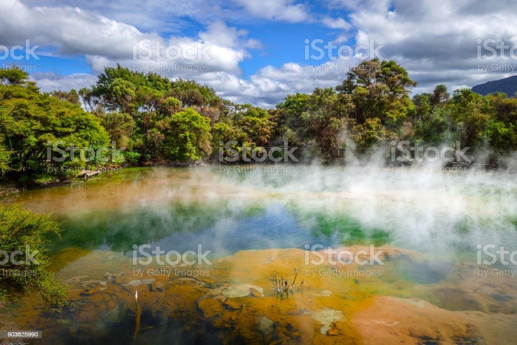 Hot springs lake in Rotorua, New Zealand stock photo
