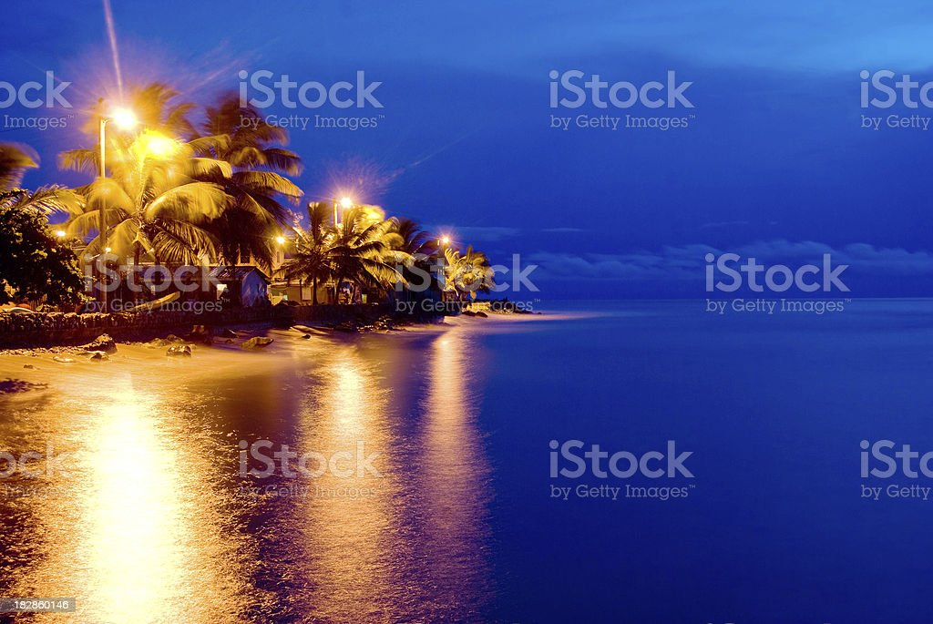 serene blue beach scene at night with palm trees
