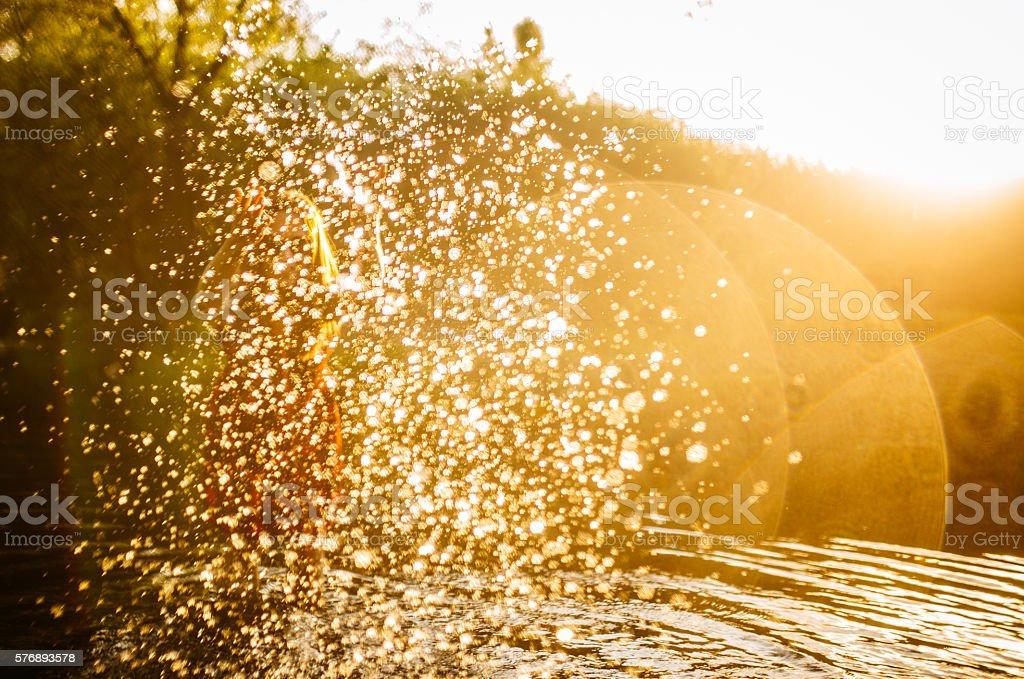 Heißer Sommer – Foto