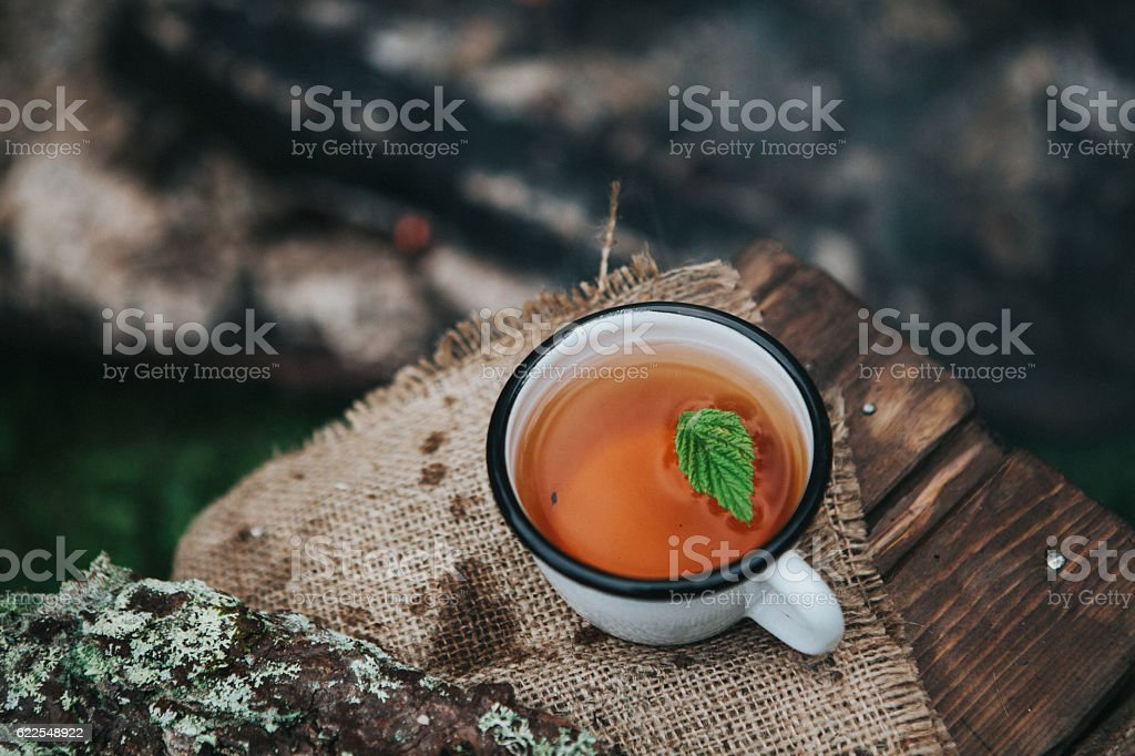 hot tea on a fire stock photo