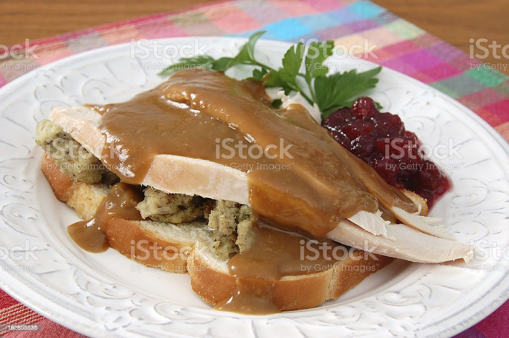 Hot Turkey Sandwich​​​ foto