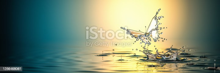 Water butterfly. A new life. The birth of the life. Concept. 3D Render