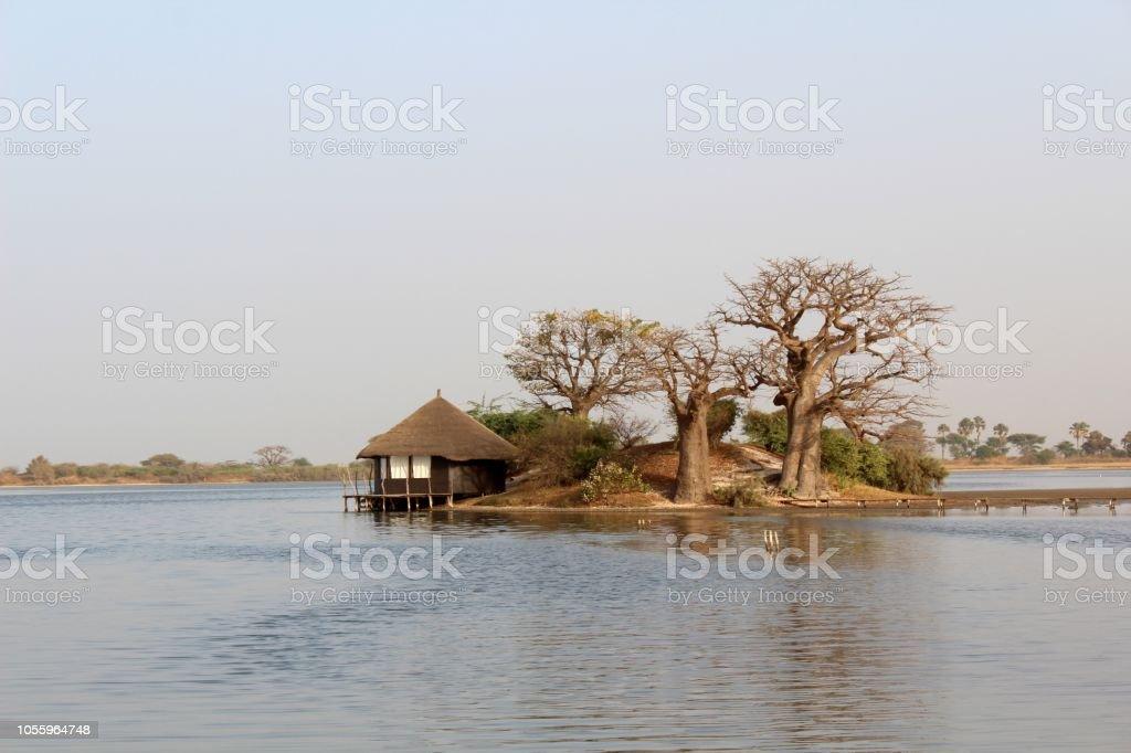 Hotel y baobabs - foto de stock