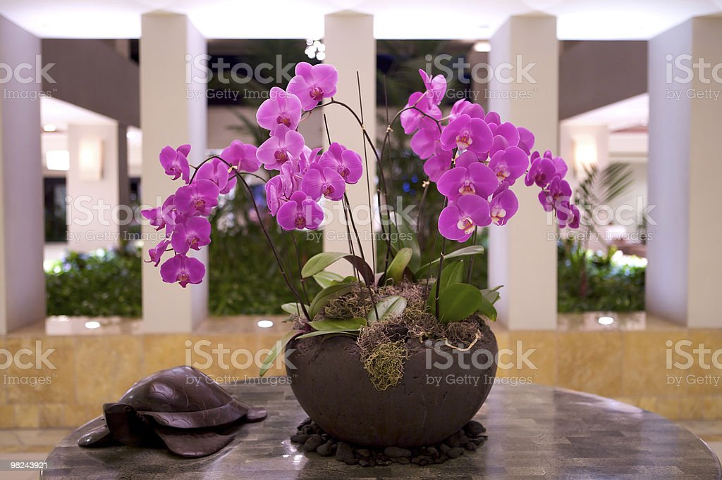 Hotel interior of luxury spa resort royalty-free stock photo