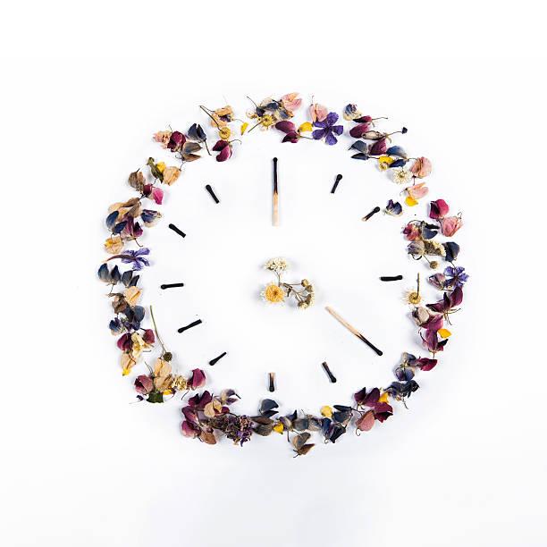 hours of burnt matches and flowers on a white background. - blumenuhr stock-fotos und bilder