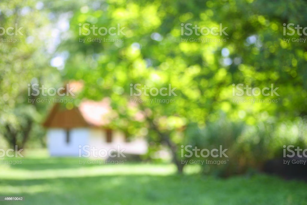 House among the trees stock photo