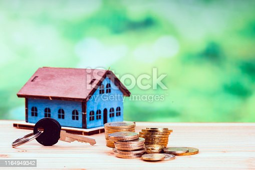 small house and coins on green background
