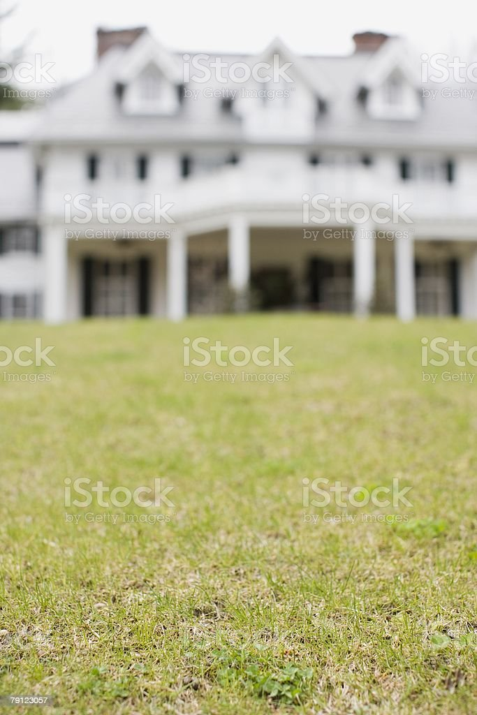 House and garden 免版稅 stock photo