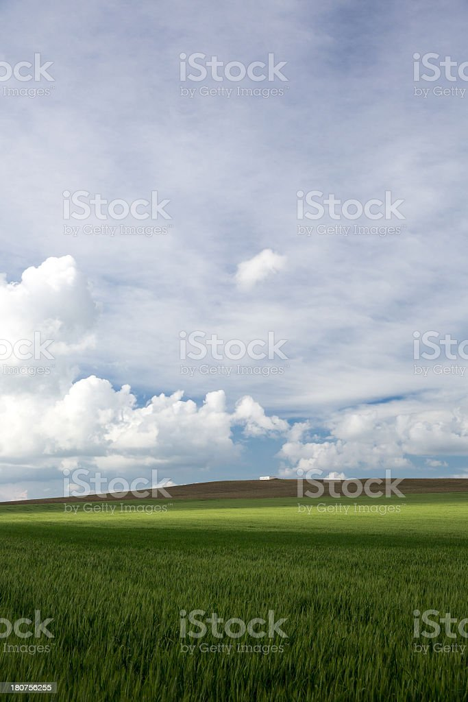 House at Green Field and unplowed area royalty-free stock photo
