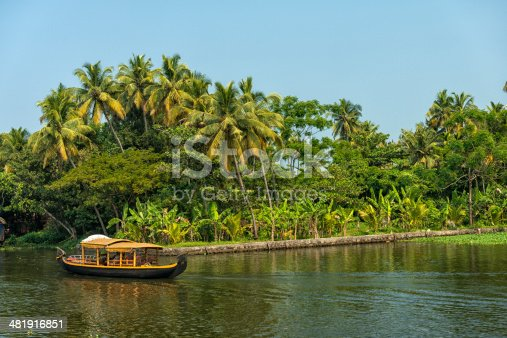 House boat in backwaters against palms background and blue sky In Alappey, Kerala, India. Kerala state, with a large network of inland canals earning it the sobriquet