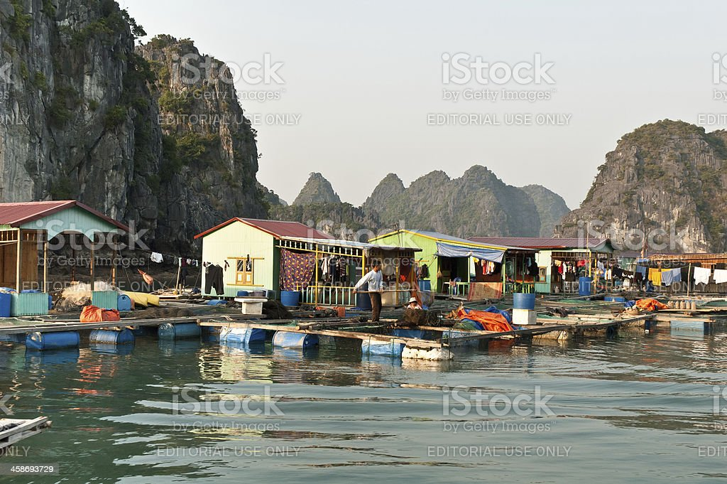 House Boats In Halong Bay stock photo