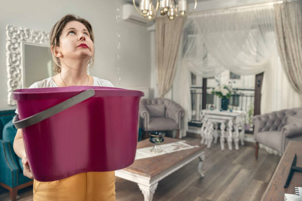 House Ceiling is Flowing - Woman Holding Bucket While Water Droplets Leak From Ceiling House, Rooftop, Ceiling, Leaking, Water leaking stock pictures, royalty-free photos & images