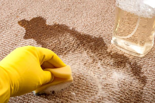 haus reinigung und schrubben das boden-konzept mit engen einer hand mit gelben gummihandschuhen aufräumen eines verschütteten kaffee auf einem teppich mit einem schwamm und einer flasche teppich reiniger - weinflecken entfernen stock-fotos und bilder