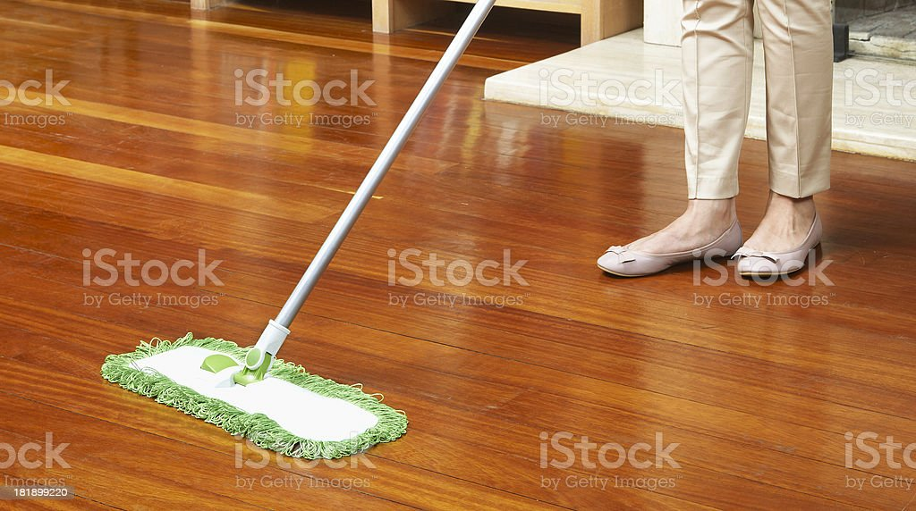 House Cleaning (Click for more) stock photo