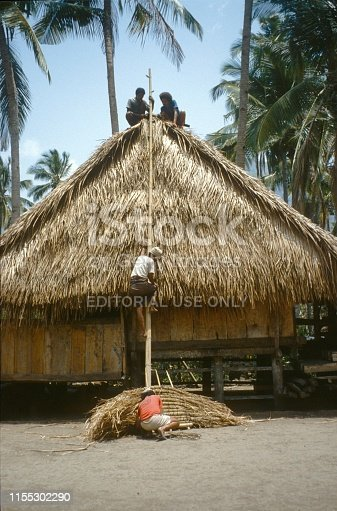 Java, Indonesia, 1977. House building on Java. Craftsmen seal the roof with dried palm leaves.