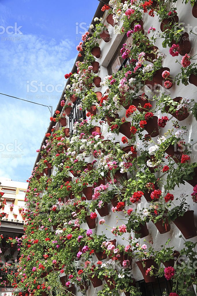 House decorated with flowerpots royalty-free stock photo