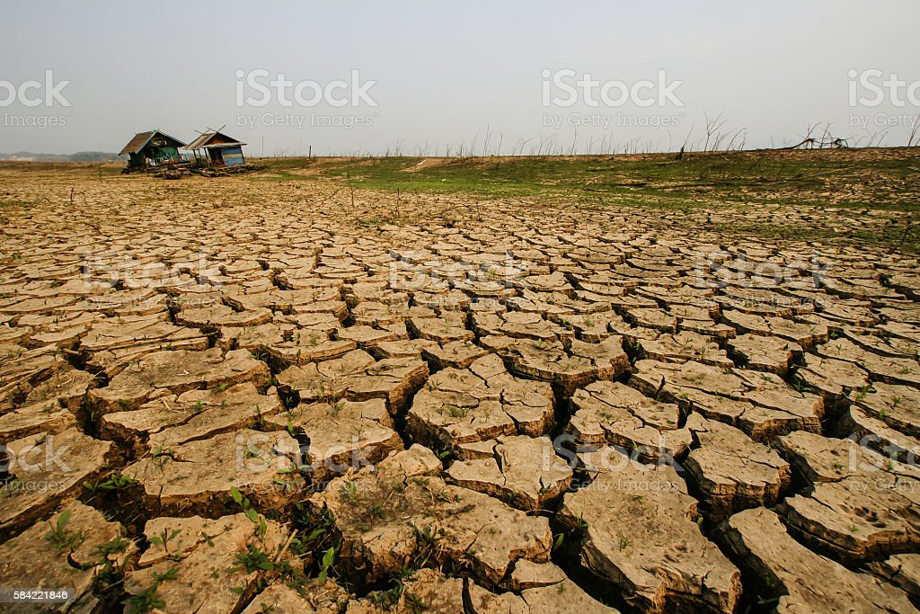 House dry land texture stock photo