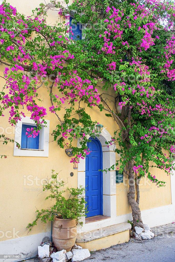 House full of flower stock photo