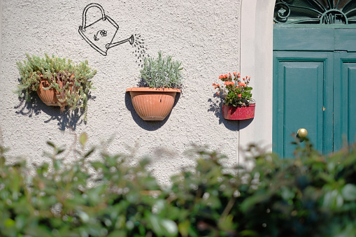 house garden and watering can