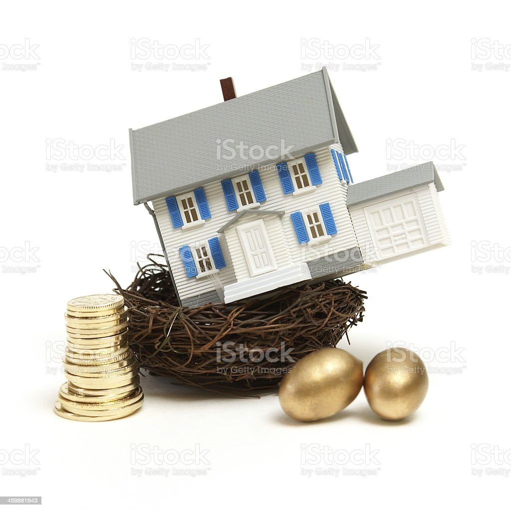 House In a Nest stock photo