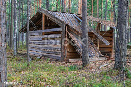 istock House in the forest 1296451310