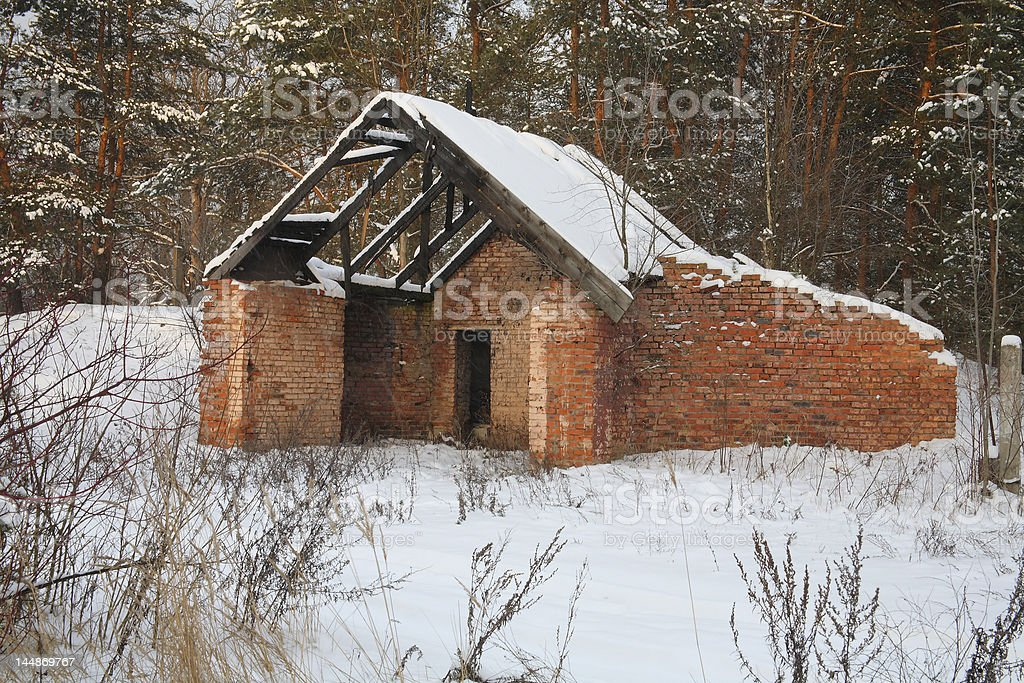 House in the forest royalty-free stock photo