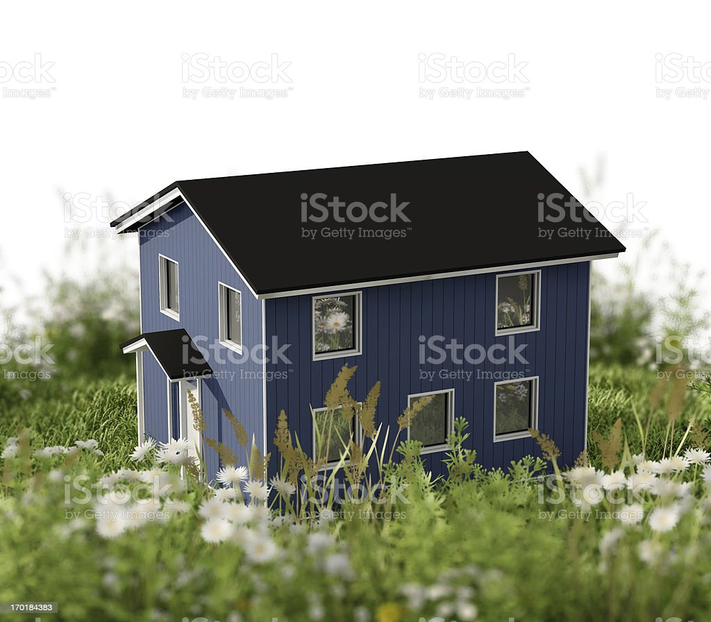 House in the lawn royalty-free stock photo