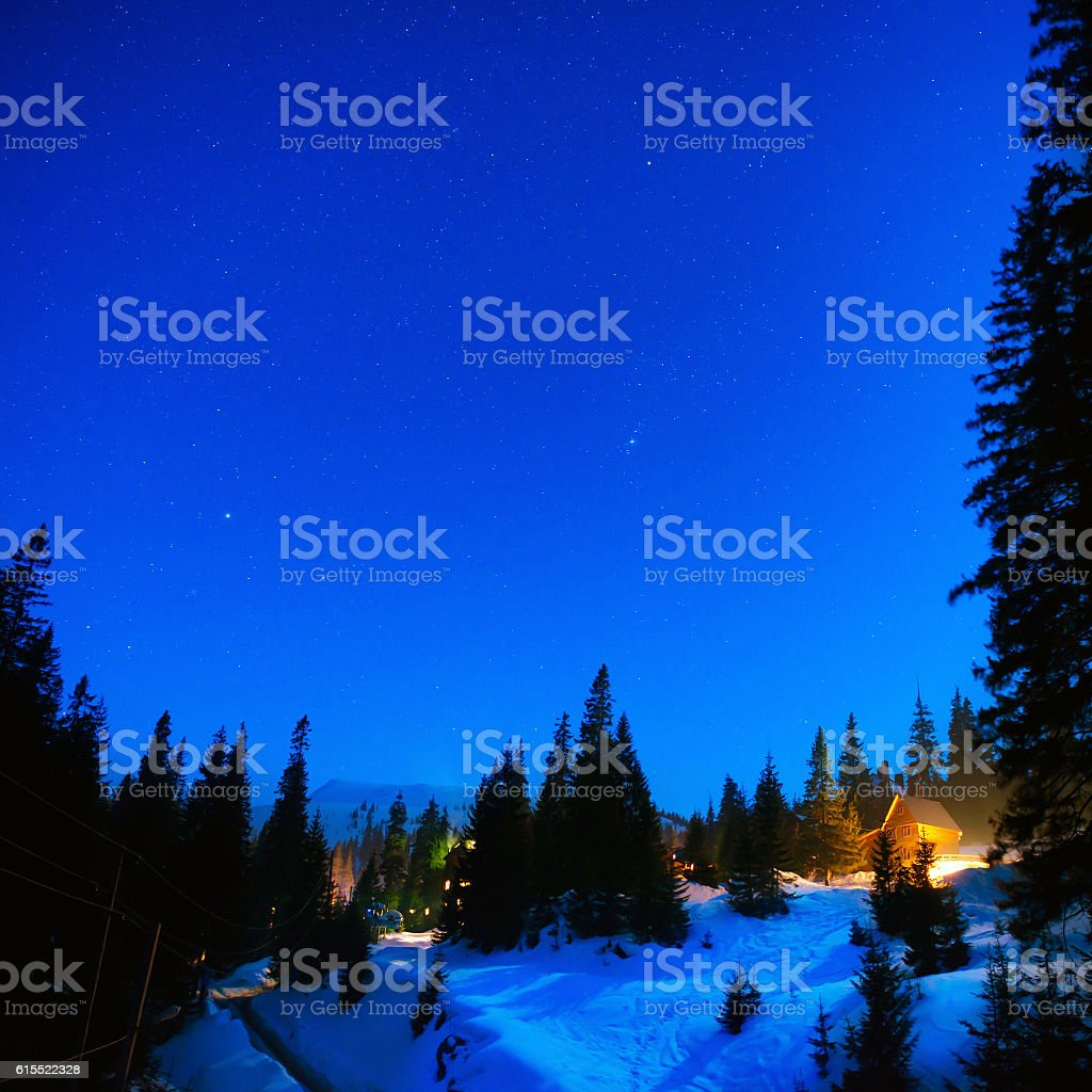 House in the night winter forest stock photo