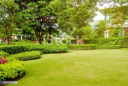 House in the park, Green lawn, front yard is beautifully designed garden, Flowers in the garden, Green grass, Modern house with beautiful landscaped front yard, Lawn and garden blur background.