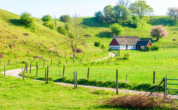 hus i dalen - skåne bildbanksfoton och bilder