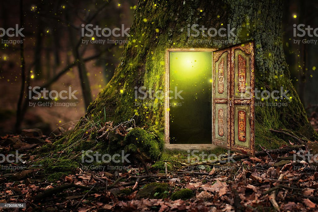 house inside tree stock photo