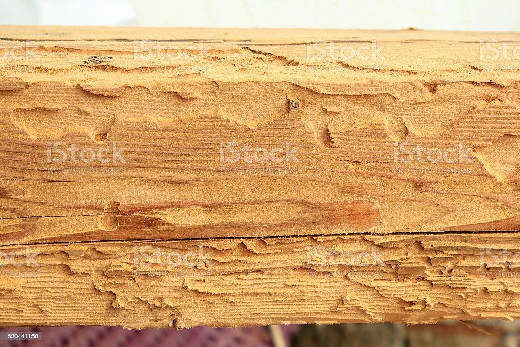 haus bockk fer angriff auf die spruce holz stock fotografie und mehr bilder von abgerissen istock. Black Bedroom Furniture Sets. Home Design Ideas