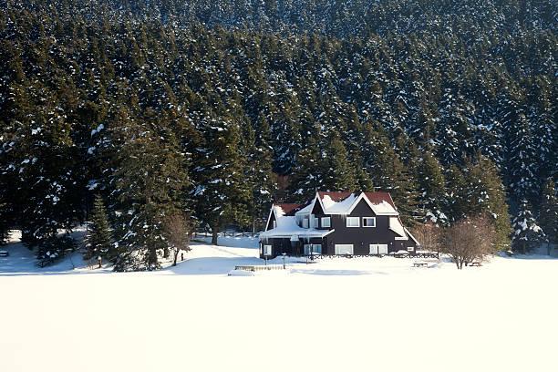 하우스 근처 임산 겨울 - 볼루 뉴스 사진 이미지