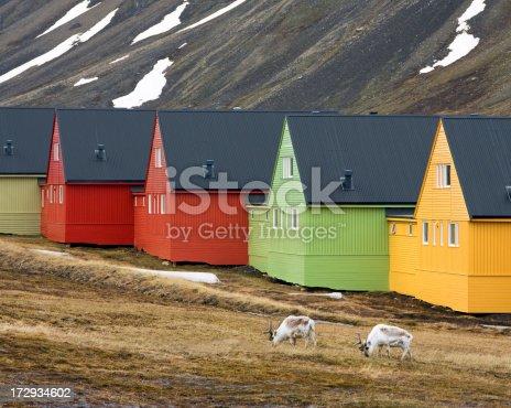 istock House Reindeer Arctic Tundra 172934602