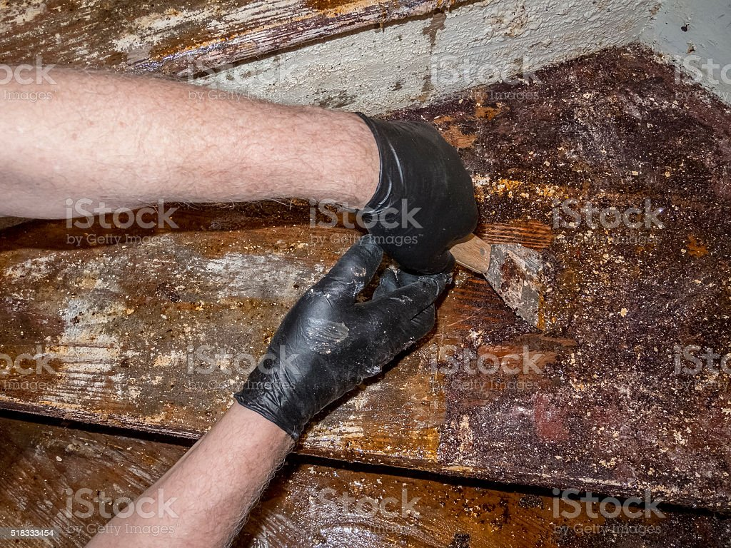 House Renovation--Scraping Old Paint Frm Staircase stock photo