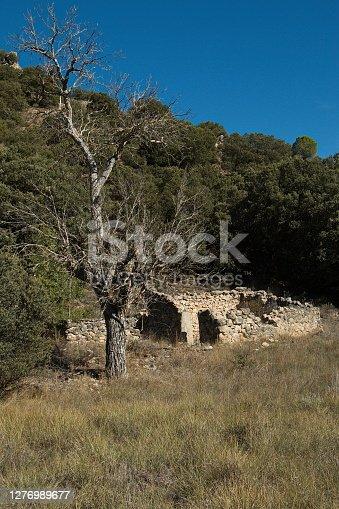 istock House ruin at the hiking track from Aragosa to La Cabrera in park Barranco del Rio Dulce, Guadalajara Province,Spain,Europe 1276989677