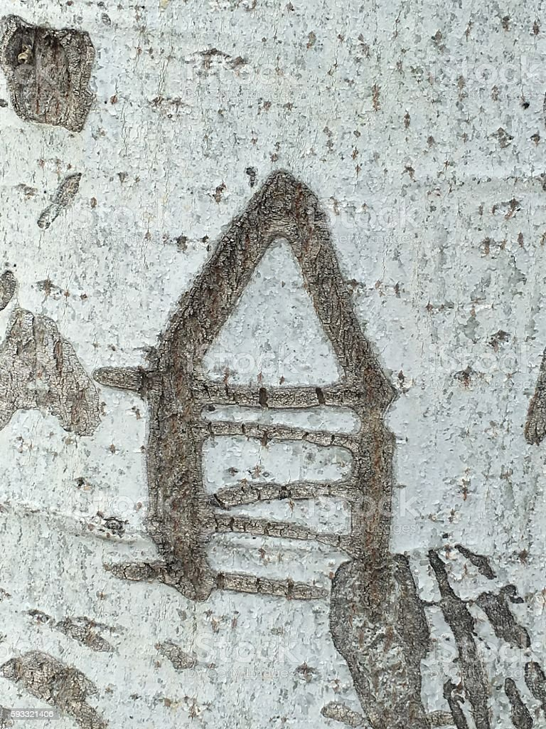 House symbol icon carved in white bark stock photo