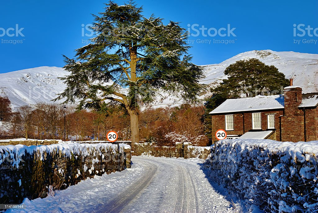 House, tree, and snow covered lane stock photo
