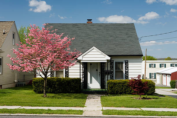 House with green lawn and pink tree White house and pink dogwood tree bungalow stock pictures, royalty-free photos & images