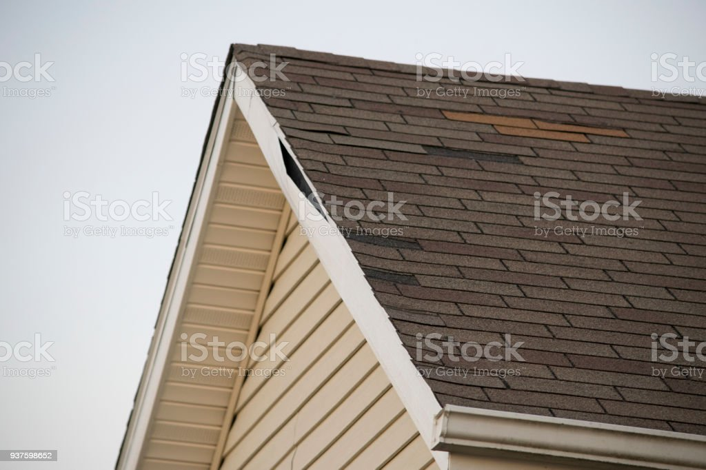 House With Moldy Vinyl Siding Soffit Fascia And A Damaged
