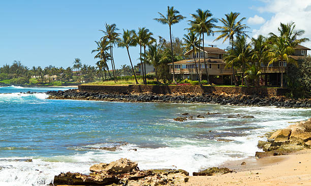 house with palm trees facing blue ocean, hawaii - hawaii home stock photos and pictures