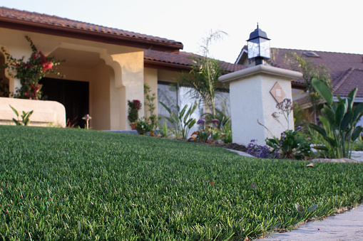 House with Synthetic Lawn